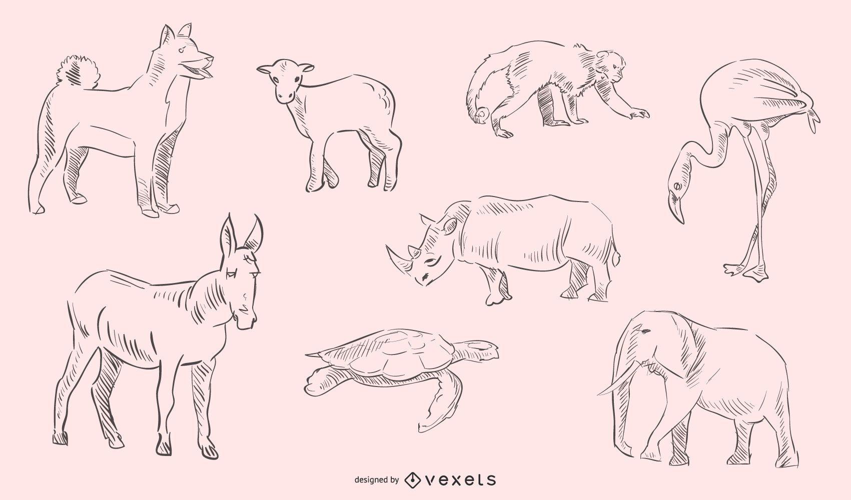 Colección animales dibujados a mano