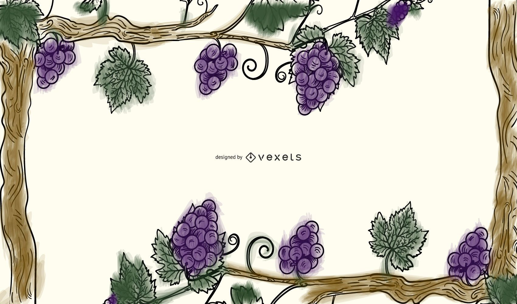 Grapes Vines Grape Leaf Border Vector