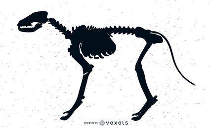 Huesos de perro