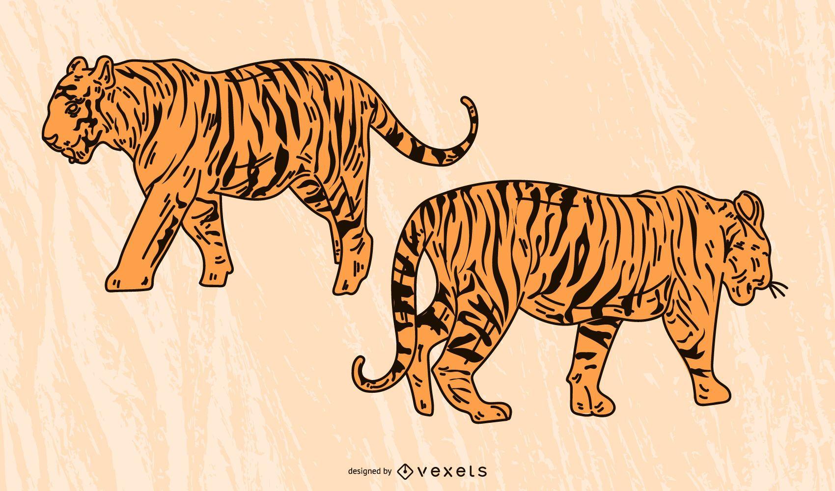 El vector de la imagen del tigre 12