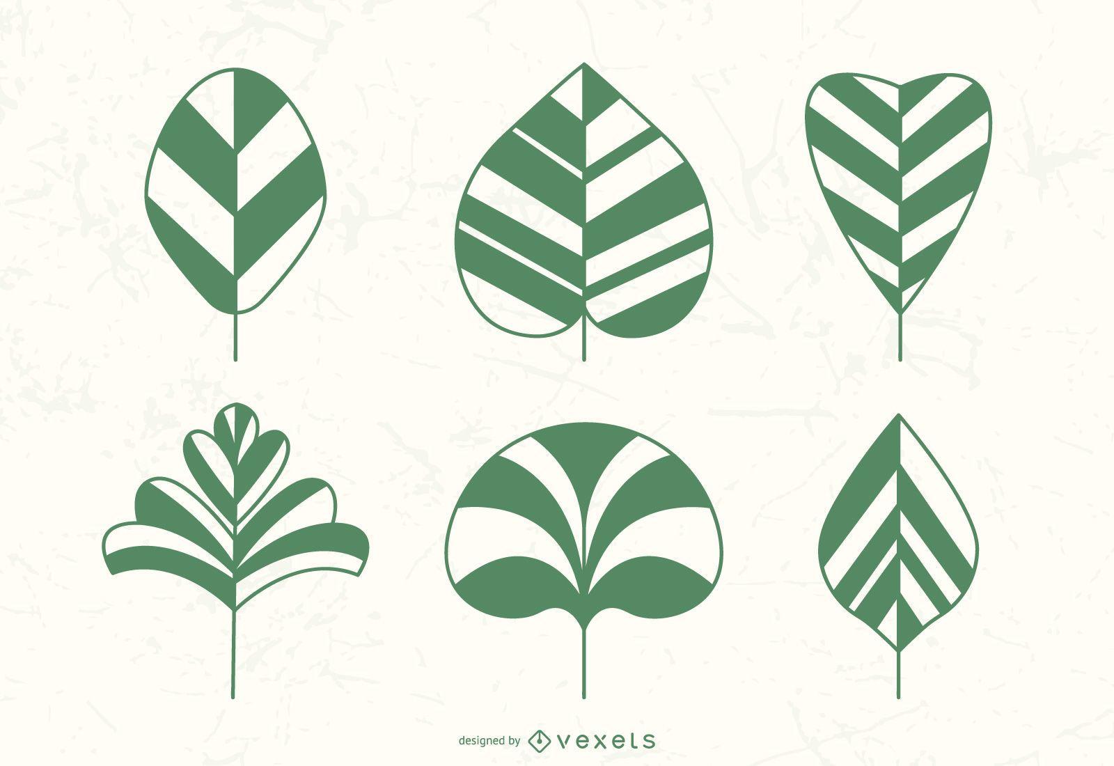 plant leaves illustration set