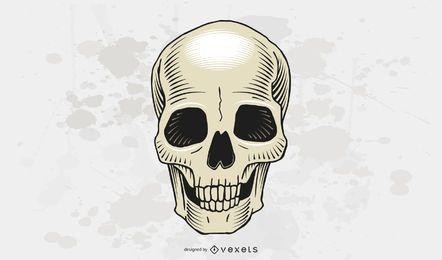 Vector cráneo libre