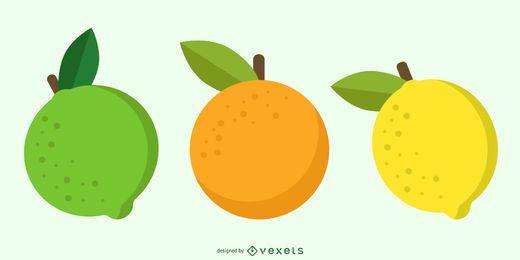Vector libre de fruta cítrica