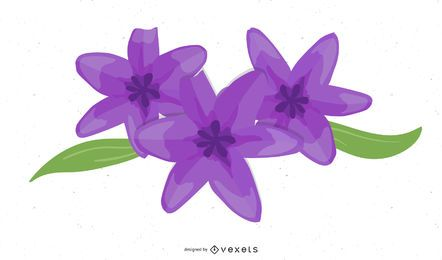 Lilie voller Blüte