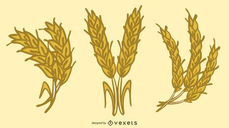 Vetor de trigo amarelo 04