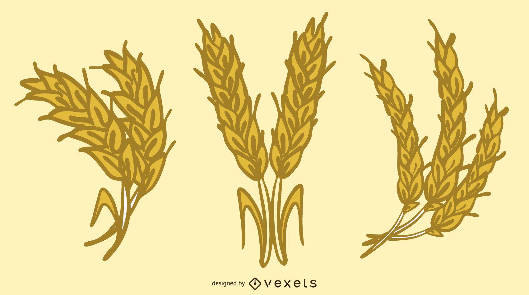 Yellow Wheat 04 Vector