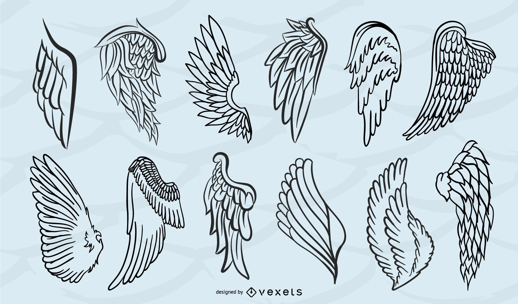 Wings silhouette isolated set
