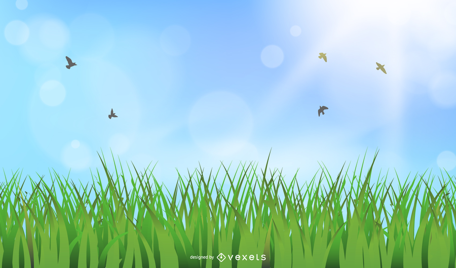 Beautiful Sky Theme Vector