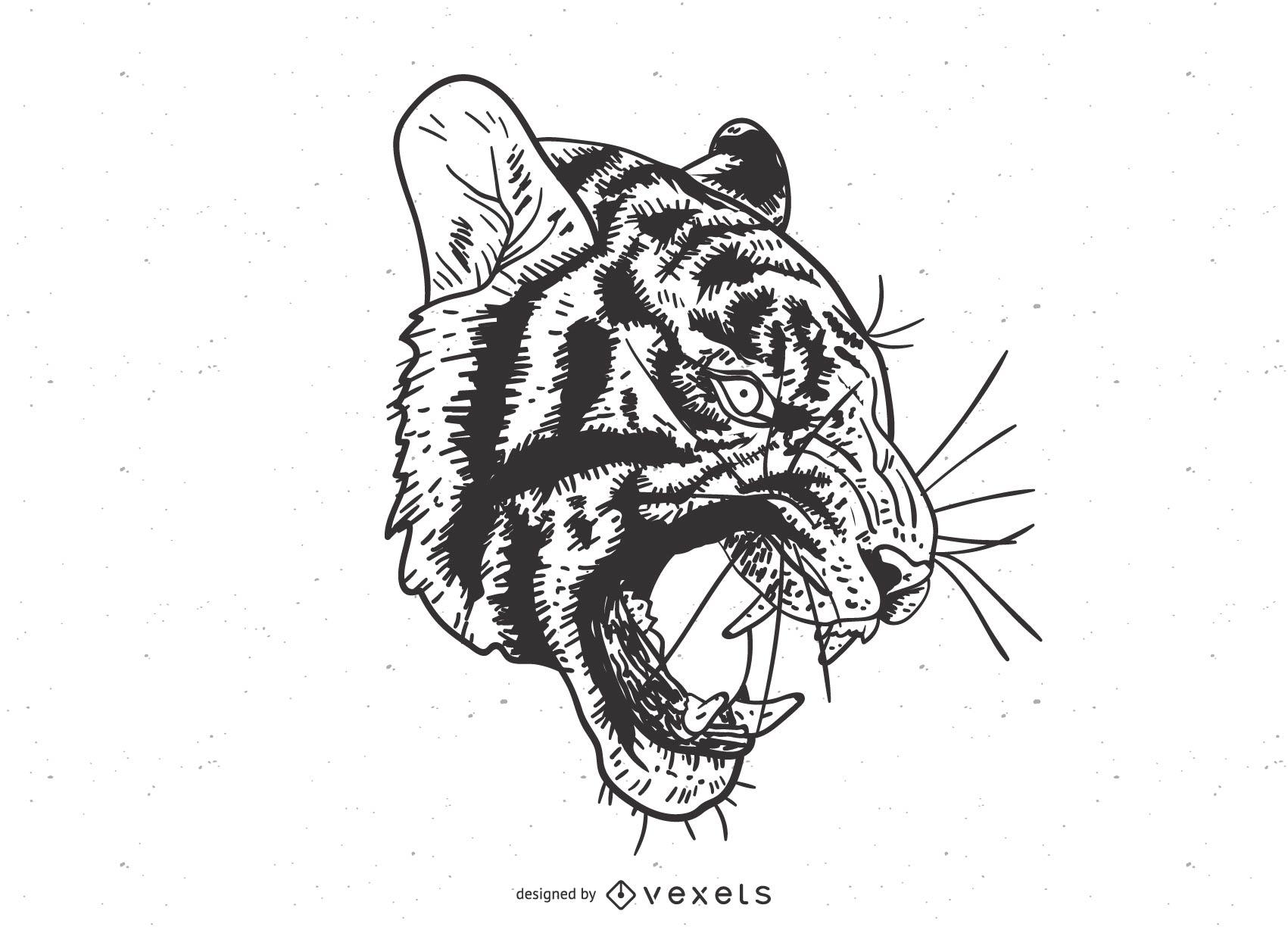 El vector de la imagen del tigre 14