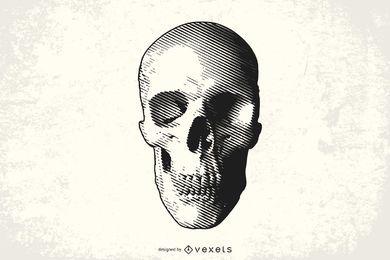 Arte vectorial de cráneo