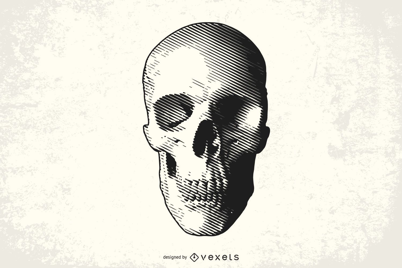 Halftone Skull Drawing Design