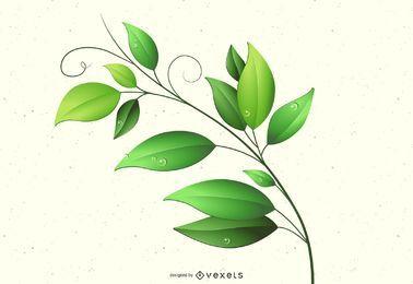 Ilustración de hojas verdes aisladas