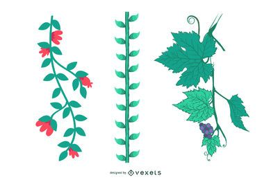 Planta de la selva Vid habichuelas