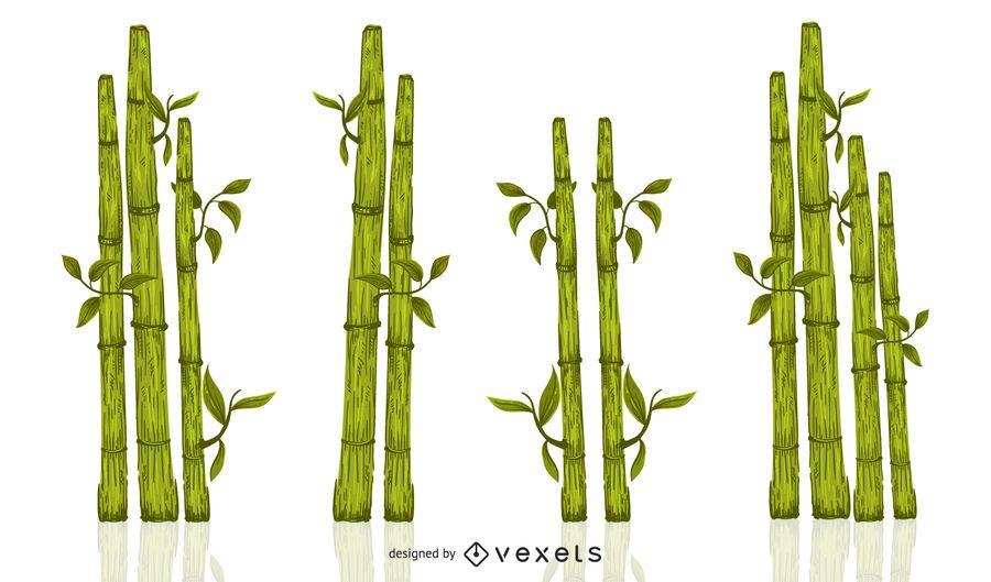 Green bamboo illustration set