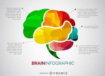 Infografía de cerebro