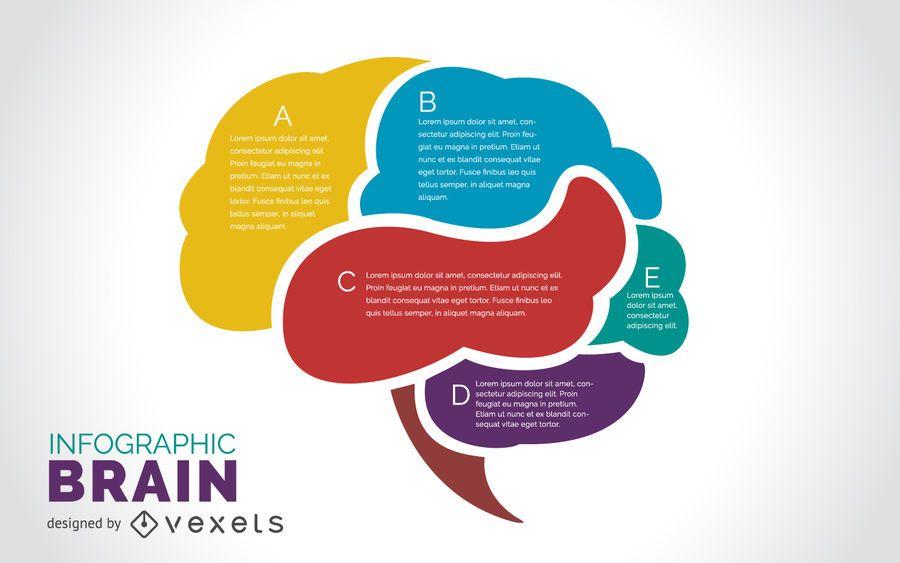 Infográfico de cérebro plano