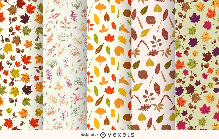 Autumn leaves pattern set