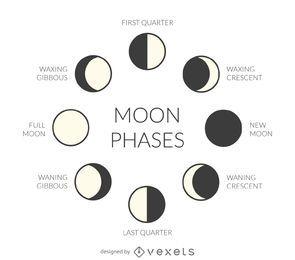Fases ilustradas de la luna
