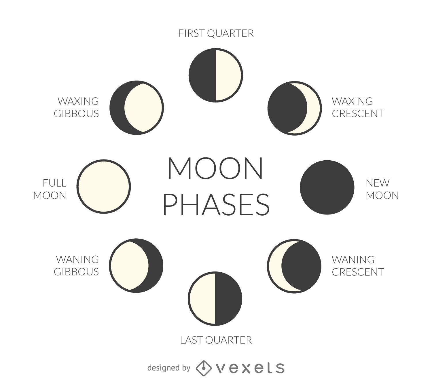 Illustrated moon phases vector download image user pooptronica Choice Image