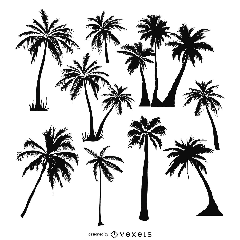 Conjunto de siluetas de palmeras