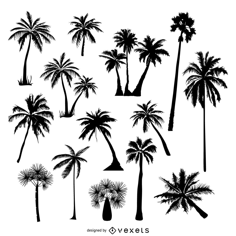 Coleção de silhuetas de palmeiras