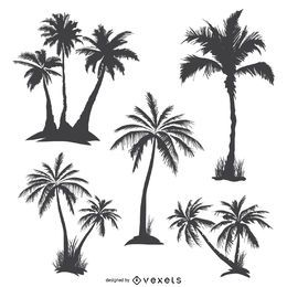 Monochrome palm trees silhouettes