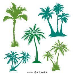 Conjunto de palmeiras verdes