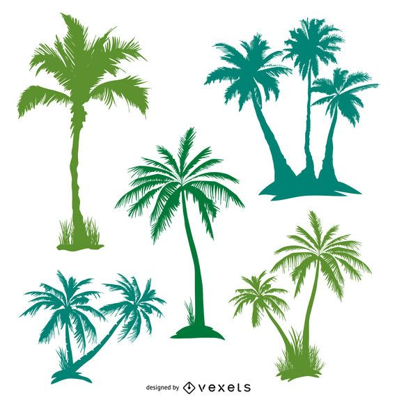 Green palm trees set