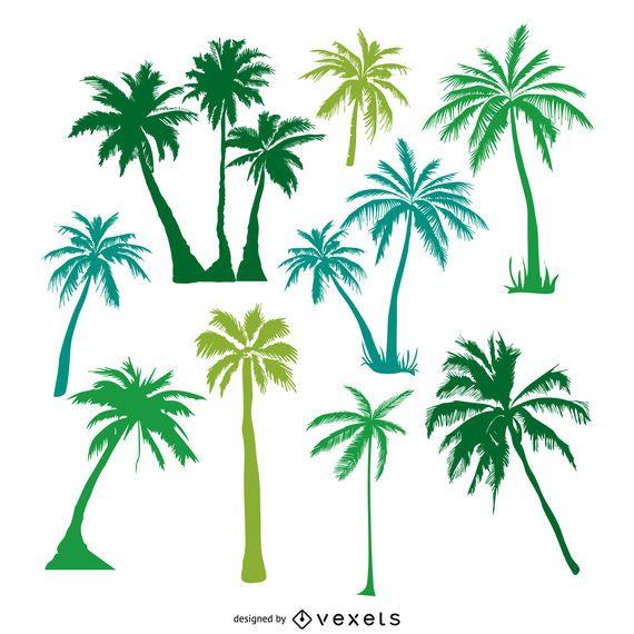 Siluetas de palmeras verdes.