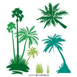 Palmen isoliert Silhouette Set