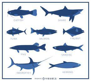Cartaz de espécies de peixe