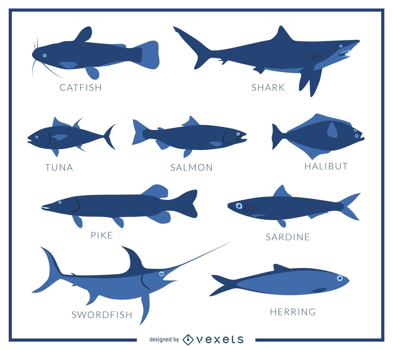 P?ster de especies de peces