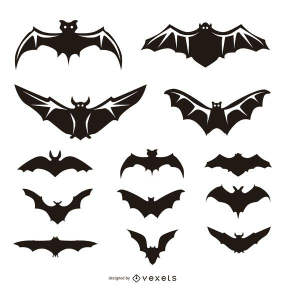 13 murciélagos ilustraciones y siluetas