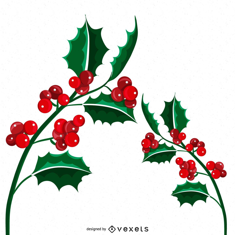 Ilustración de muérdago de Navidad aislado