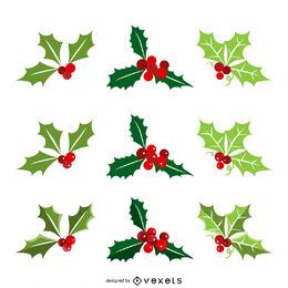 Christmas mistletoe collection