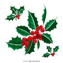 Illustrated isolated Christmas mistletoe