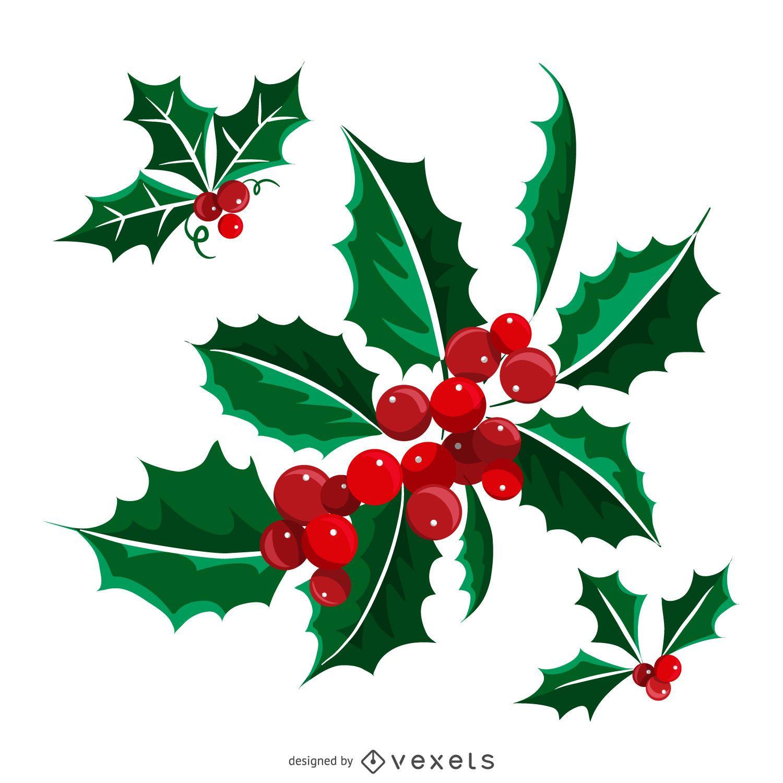 Muérdago de Navidad aislado ilustrado