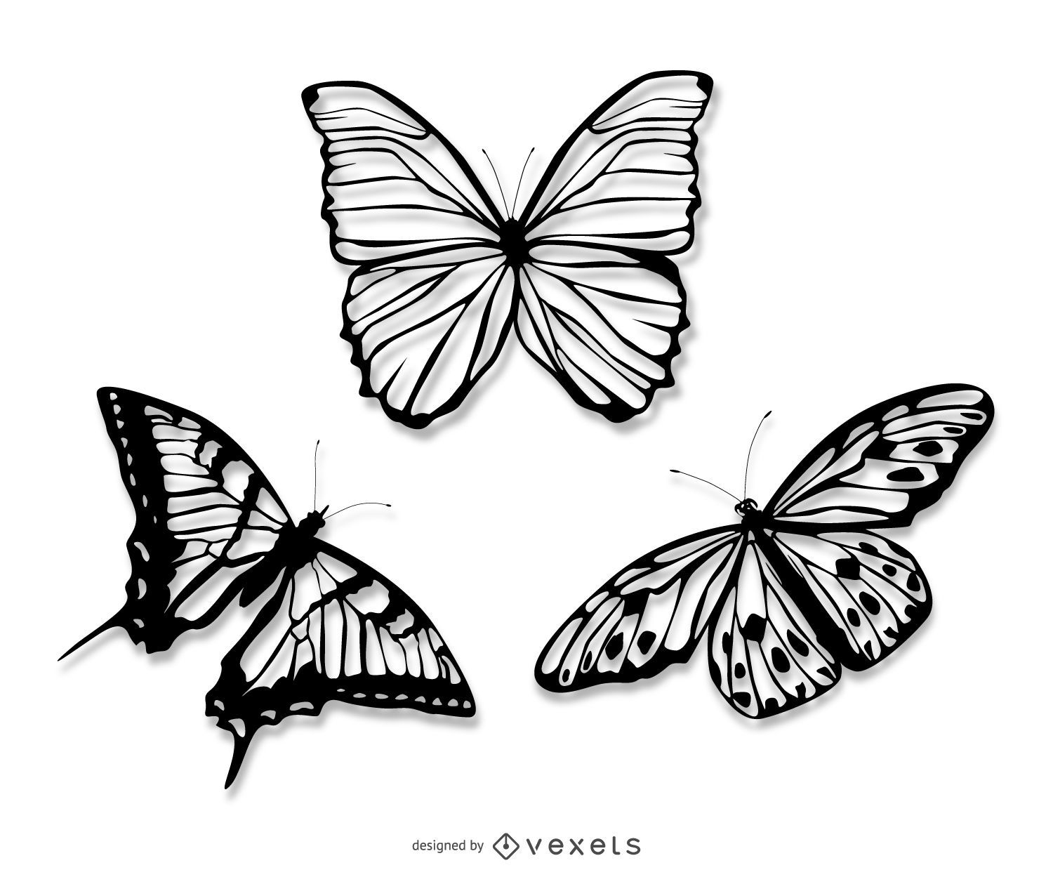 Realistic butterfly illustrations