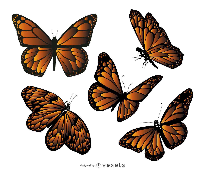 Conjunto de ilustración de mariposa monarca