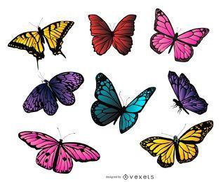 Colección colorida de la ilustración de la mariposa