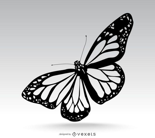 Ejemplo aislado de la mariposa