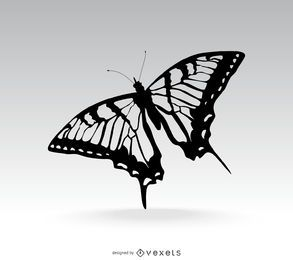 Ejemplo aislado de la mariposa sobre gris