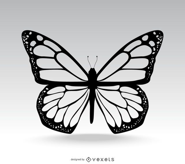 Classic isolated butterfly illustration