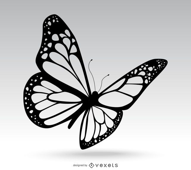 2b2e63df5f23cf3542c01fdef7c475f6 isolated butterfly drawing