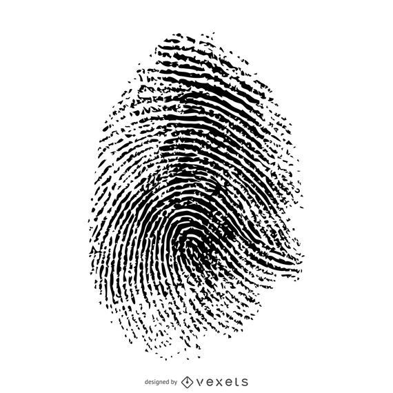 Isolated fingerprint illustration