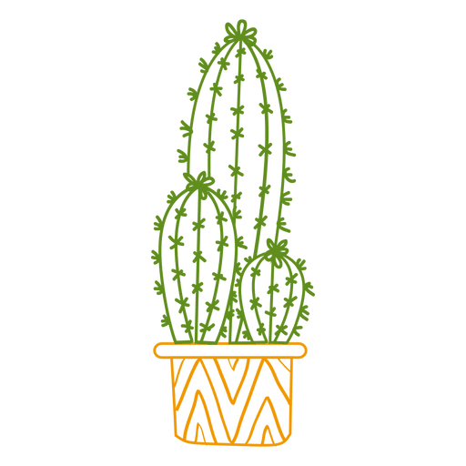 Cactus ornamented color silhouette Transparent PNG