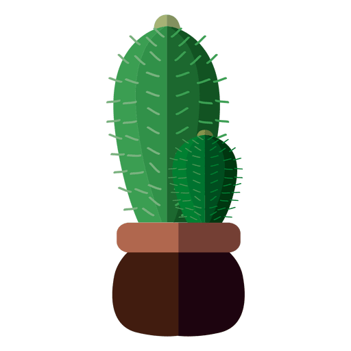 Flat 2 cactus pot drawing Transparent PNG