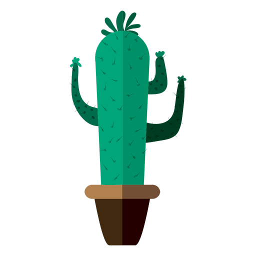 Funny flat cactus pot drawing png