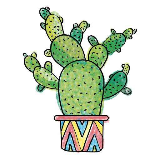 Hand drawn watercolor multiple cactus  png