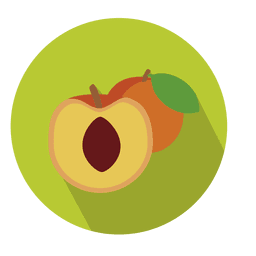 Apricot fruit circle icon